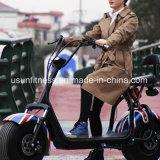 Motociclo elettrico di mobilità dei Cochi della città della gomma grassa elettrica del motorino