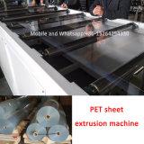 Haustier-Blatt-Strangpresßling-Maschine