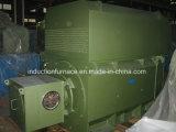 Yrkk 3 Fases de 1000W de inducción eléctrica AC servomotor.