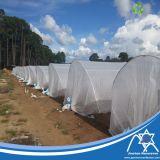 100% PP com 3% de tecido não tecido tratado com UV para cobertura de estufa