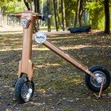 電池式Glodenカラーはスクーターを畳む