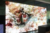 (500mm*1000mm) экран дисплея крытого представления арендный СИД этапа полного цвета P3.91
