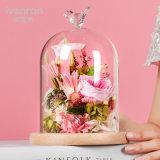 Conservas de Flor para San Valentín Regalo de Cumpleaños