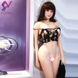 2017 grosse HÜFTEN brachten reizvolles nacktes Geschlechts-schöne Mädchen-Puppe japanisches Handels der Silikon-Miniliebes-realistisches nacktes Nixe-3D voran