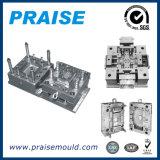 Prototipo rápido/moldeado/molde/molde plásticos del moldeado de Injecction de China