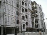 Panneaux de mur d'ENV pour les constructions/type neuf panneau de mur matériel de Builidng