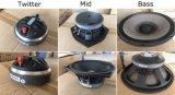 R2 de 15 pulgadas de tres frecuencias de altavoz remoto (TACT)