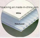 8 ' *4' de pp Golf Plastic Witte Behandelde Corona van Coroplast van het Blad
