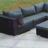 PEの藤のソファーの屋外のソファーの一定の庭の家具