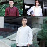형식 짧은 소매 다중 색깔 남자 요리사 요리사 제복