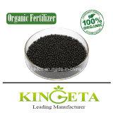 Fertilizzante fogliare per la pianta dell'anacardio