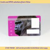 Cartão de Saúde Animal feitas com tarja magnética de PVC
