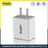 통과된 세륨 RoHS iPhone를 위한 미국 표준 전화 충전기