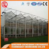 Парник Multi-Пяди земледелия стеклянный с Hydroponics Stsyem