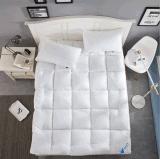 Белый Гусь утка вниз и пуховые кровать матрас Украшение для монитора
