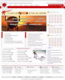 ウェブサイトの設計および開発3