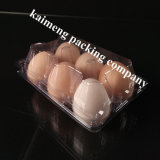 Fornecedores plásticos da bandeja do ovo do PVC do espaço livre por atacado do pacote de ovo da galinha BRITÂNICOS