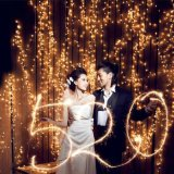 Просто и шикарный свет занавеса СИД для украшения венчания/дня рождения/партии