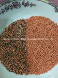Cor de lentilhas Sorter Última tecnologia RGB True Color preço de fábrica