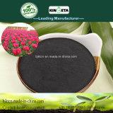 Il carbonio di Kingeta ha basato i ricchi organici biologici di Fertiilizer in efficace fertilizzante del carbonio
