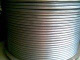 0.6mm starkes nahtloses Edelstahl-Ring-Gefäß