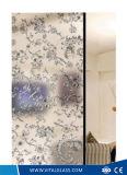 O ácido gravou a arte decorativa pintada de vidro