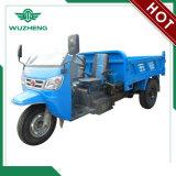 Três rodas chinês Diesel de Waw com o pára-sol para a venda (WF3B2521104)