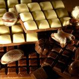 [شكلت] آلة شوكولاطة قشرة قذيفة & [تريبل-شوت] [موولد] خطّ شوكولاطة صانع شوكولاطة [برودوكأيشن لين] ([قج300])