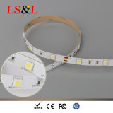 30LEDs/M indicatore luminoso di striscia di 5050 SMD LED impermeabile per la decorazione
