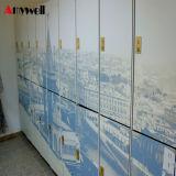 Phenolic Compacte Gelamineerde Kasten van de Kast en van de School van het Kabinet van de Kast van het Strand Muntstuk In werking gestelde voor Verkoop