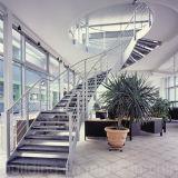 De moderne Spiraalvormige Trap met Marmeren Betreden Trede/boog de Treden van het Glas met het Traliewerk van het Glas