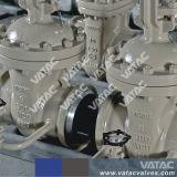 Valvola a saracinesca dell'acciaio inossidabile del getto (Z41W)