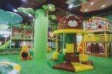 Спортивная площадка чудесных коммерчески крытых детей спортивной площадки больших крытая мягкая