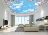 Ra>90 Bluesky/nuvens brancas céu LED sem caixilho da Luz do Painel do teto para Home-Use