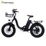 2017 bici plegable de la bici Electrical/250W E/nuevas bicis eléctricas