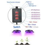 Mutil機能スマートな制御倍によって終了される二重LEDはスペクトル制御、時間を計るDimingと軽く育つ