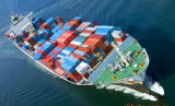 Frete do transporte da consolidação de LCL de Guangzhou a Maldives
