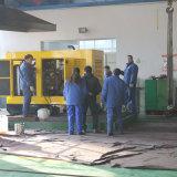 De Diesel van China 40kw Reeks van de Generator voor Verkoop