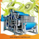 Máquina de proceso de fruta de kiwi