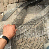 Acoplamiento flexible de la cuerda de alambre de acero inoxidable para la red de la pajarera