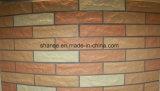 Resistência às condições atmosféricas mosaico não vidrados nem esmaltados muito adequado para renovação de parede