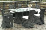 Vimine del patio del giardino/mobilia del rattan che pranza insieme (TG-608)
