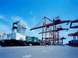 A logística do transporte de mercadorias do Mar Guaangdong para Sao Paulo