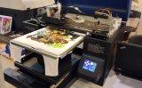 Regenbogen-Shirt-Drucken-Maschinen-Preise in Indien