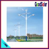 순수한 백색 작동 일생 가로등 50000 시간 50W Le Solar