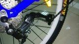 2018新しいモデルのBurshless DCモーターリチウム電池のディスクブレーキアルミ合金フレームLCDの表示の電気バイク