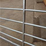 Cancello d'acciaio galvanizzato tubo rotondo dell'azienda agricola del mercato dell'Europa
