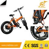 Bicicleta eléctrica plegable de la bicicleta de 20 pulgadas para los estudiantes y la señora