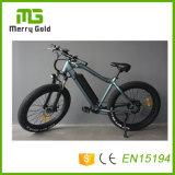 O pneu gordo E de Ebikes da montanha de MTB Bikes a bicicleta elétrica de 48V 750W com as 20 da '' rodas polegada