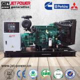 380V 50Hz 3phase 발전기 가스 기관 발전기 20kw 30kw